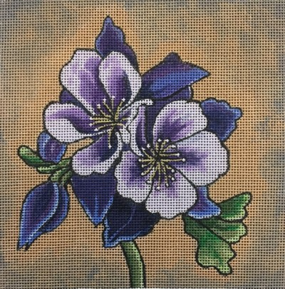 517-purple-columbine-np
