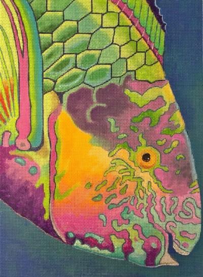 surf-parrotfish-np