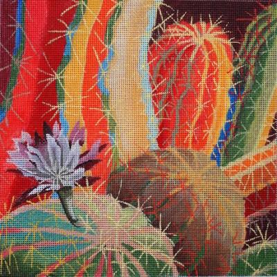 127-cactus-blossom-np