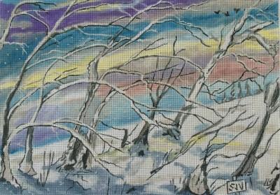 1401-winter-woods-np