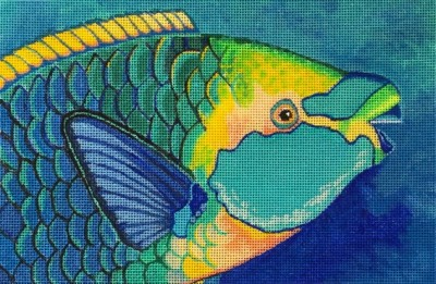 613-green-throated-parrotfish-np