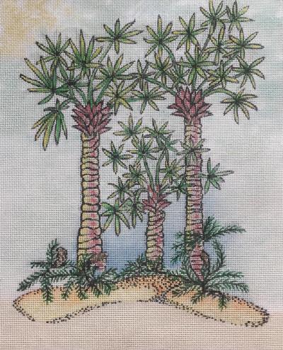 803 Three Palms NP